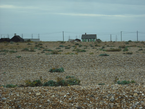 Dungeness view - looking inland at houses and pylons